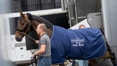 Horses arrival at the Longines Masters of Paris