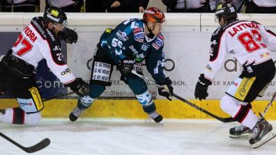 HC Orli Znojmo - LIWEST Black Wings Linz