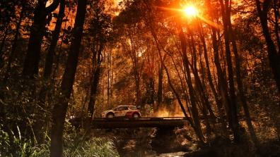 Stages 18-20: Coates Hire Rally Australia 2014