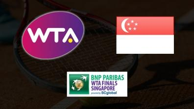 WTA Finals Singapore: Serena WILLIAMS - Ana IVANOVIC