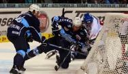 Hamburg Freezers - Augsburger Panther