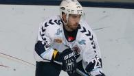Hamburg Freezers - Straubing Tigers