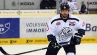 Thomas Sabo Ice Tigers - Straubing Tigers