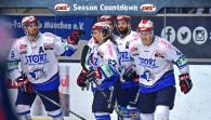 getty | Wild Wings: Das war die Saison 14/15