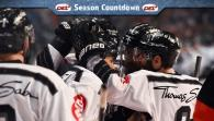 getty | Ice Tigers: That was the season 14/15