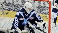 Hamburg Freezers - Schwenninger Wild Wings